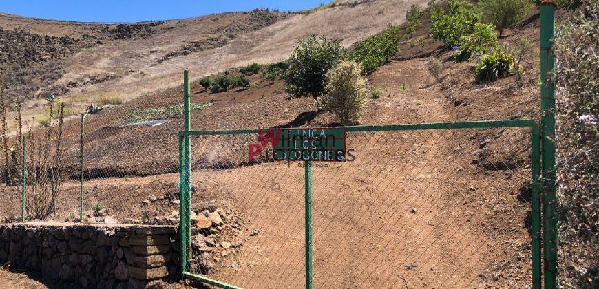 Finca con casa cueva en Caideros